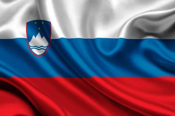 ВНЖ для граждан Словении в Украине