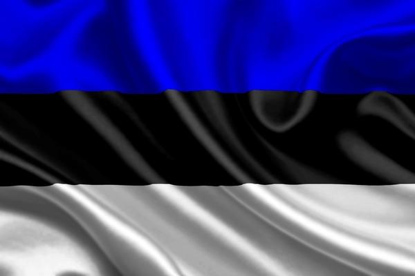 ВНЖ для граждан Эстонии в Украине